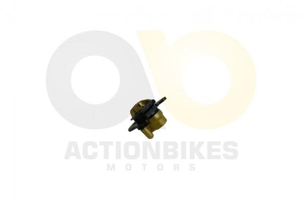 Actionbikes Jetpower-DL702-Bremssattel-hinten 463231303130332D3030 01 WZ 1620x1080