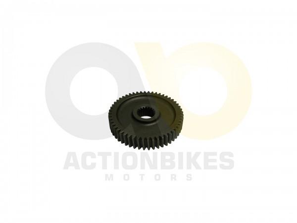 Actionbikes Motor-139QMA-Getriebe-Zahnrad-Ausgangswelle 3131353030332D313339514D412D30303030 01 WZ 1