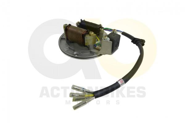 Actionbikes Mini-Quad-110-cc-Lichtmaschine-2-Wicklungeneinzelne-Stecker-Mittelbohrung-12mm 333131303