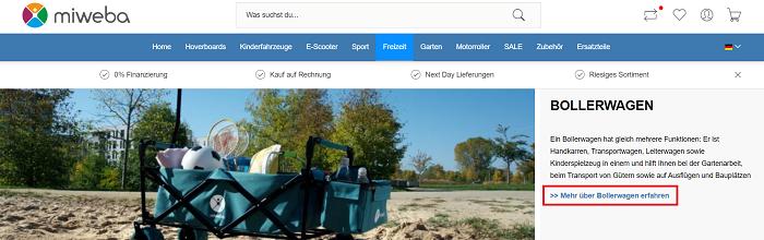 Ratgeber-bollerwagen2