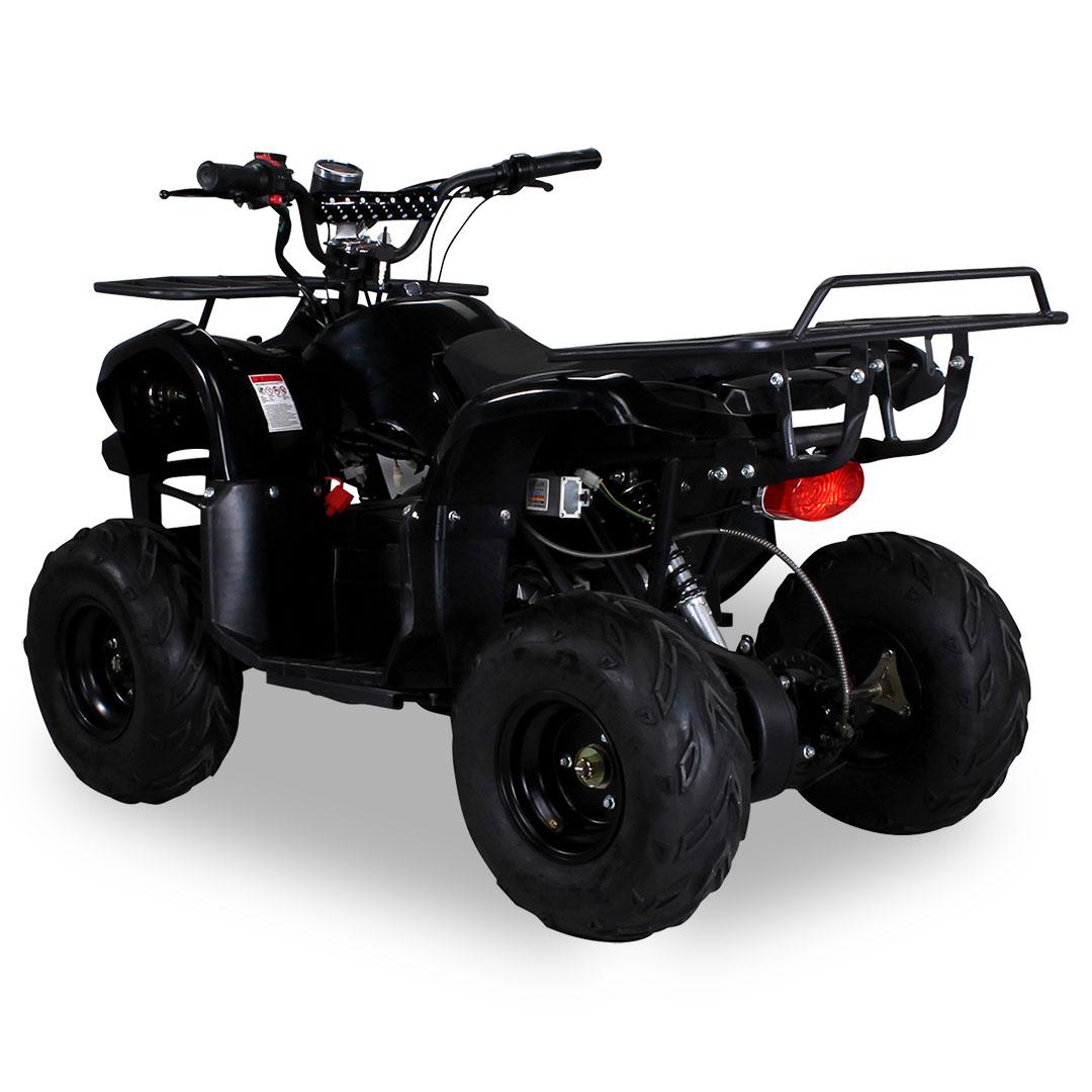 kinder quad s 8 farmer elektro 1000 watt kinder quads. Black Bedroom Furniture Sets. Home Design Ideas