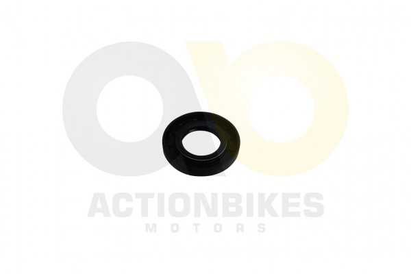 Actionbikes Simmerring-25558--Buggy-250cc-Motor-172mm 313030302D32352F35352F38 01 WZ 1620x1080