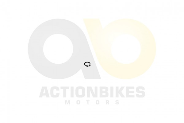 Actionbikes Speedslide-JLA-21B-Speedtrike-JLA-923-B-Wasserpumpe-Sicherungsring-Antriebszahnrad-Plast