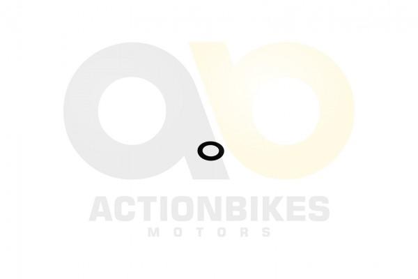 Actionbikes Shineray-XY250SRM-Bolzen-fr-Nockenwellenzahnrad--Unterlegscheibe-14241 31343133352D30373