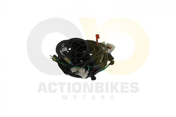 Actionbikes Dongfang-DF150GK-Kabelbaum 3034303330312D313530 01 WZ 1620x1080
