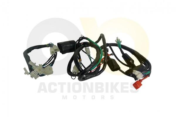 Actionbikes Kabelbaum-Baotian-BT125T-12E1 3330343030302D544A43442D30303030 01 WZ 1620x1080