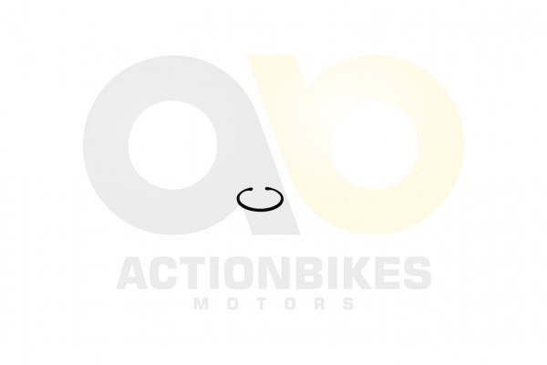 Actionbikes Jetpower-DL702-700-cc-Sicherungsring-fr-Radlager-hinten 413130303033302D3030 01 WZ 1620x