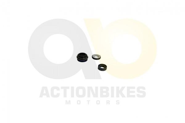 Actionbikes Dinli-DL801-Wasserpumpe-Dichtungsset-A030027-00 413033303032372D3030 01 WZ 1620x1080