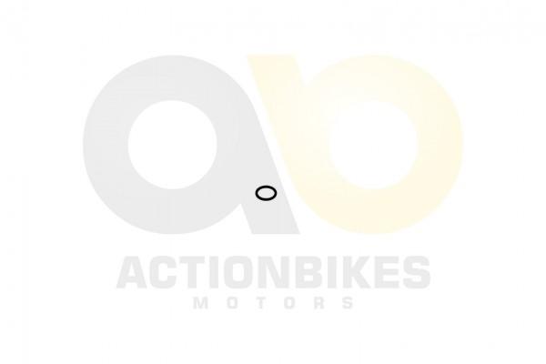 Actionbikes Speedslide-JLA-21B-Speedtrike-JLA-923-B-O-Ring-lfilter-innen-13x2 333830383430323331 01