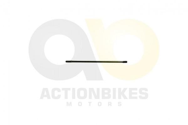 Actionbikes Motor-260cc-XY170MM-Zylinderkopfbolzen-M8x244 30303032313336303033 01 WZ 1620x1080
