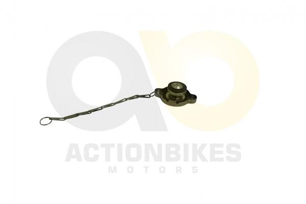 Actionbikes Shineray-XY250ST-9C-Khlerdeckel 31373034303031352D31 01 WZ 1620x1080