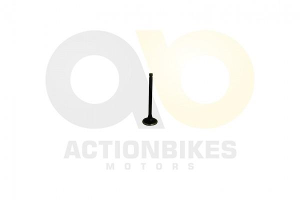 Actionbikes Motor-260cc-XY170MM-Auslaventil 31323730313032393031 01 WZ 1620x1080