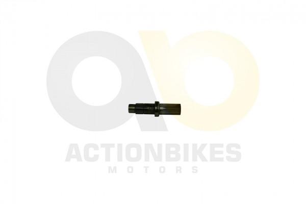 Actionbikes Motor-250cc-CF172MM-Nebenwelle-Ausgangsgetriebe 32333432312D534343302D30303030 01 WZ 162