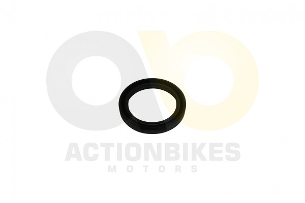 Actionbikes Simmerring-486510-Differential-vorne-Eingang-LK500Renli500 313030302D34382F36352F3130 01