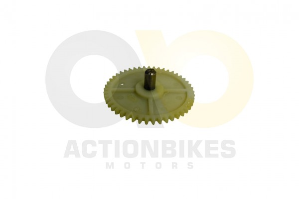 Actionbikes 139QMB-lpumpe-Steuerzahnrad 313339514D422D313030323030 01 WZ 1620x1080