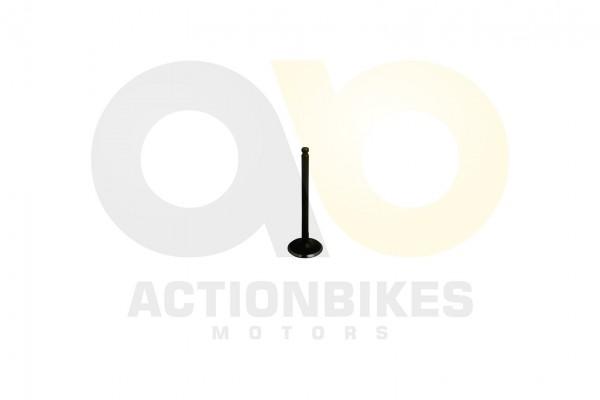 Actionbikes LJ276M-650-cc-Auslaventil 323730512D3031303036 01 WZ 1620x1080