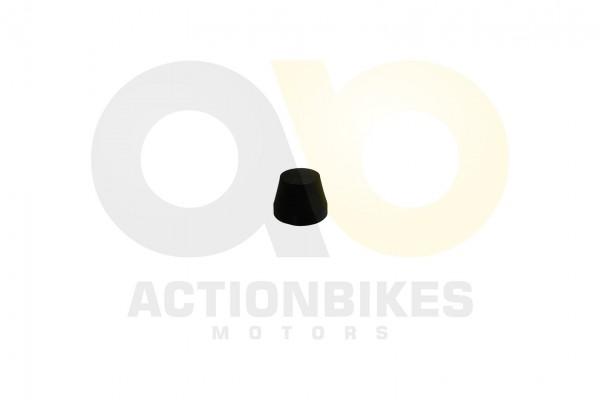 Actionbikes Feishen-Hunter-600cc-Radkappen-Gummi 362E322E30312E30343730 01 WZ 1620x1080