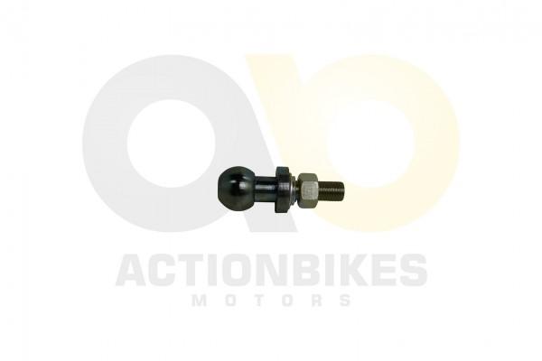 Actionbikes Shineray-XY200ST-6A-Kugelkopf-fr-Halteplatte-Anhgerkupplung-XY200ST-9STXE-ohne-Prfzeiche