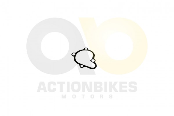 Actionbikes Motor-250cc-CF172MM-Dichtung-Wasserpumpengehuse 31393232392D534248302D30303030 01 WZ 162