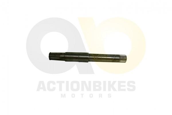 Actionbikes Motor-260cc-XY170MM-Differenzialausgangswelle-links-lang 31323730323530353030 01 WZ 1620