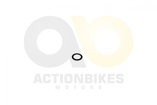 Actionbikes Shineray-XY250STXE-Ventilfedersitz-gro 31343735332D3037312D30303030 01 WZ 1620x1080
