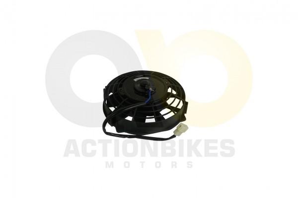Actionbikes Egl-Mad-Max-300-Lfter 323830312D303530313033303041 01 WZ 1620x1080