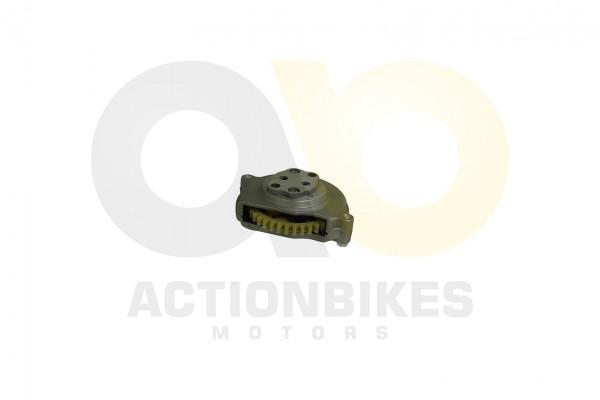 Actionbikes Shineray-XY250STXE-lpumpe 31353131322D3037312D30303030 01 WZ 1620x1080