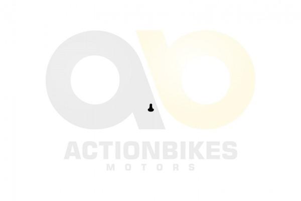 Actionbikes Dinli-DL801-Auspuff-Hitzeschutzblech-Befestigungsschraube---M6X10X16L- 413035303233332D3