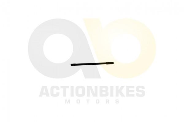 Actionbikes Shineray-XY250SRM-Bolzen-B-Zylinder-20mm 31323334332D3131342D30303030 01 WZ 1620x1080