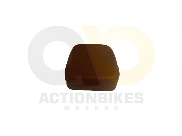 Actionbikes Znen-ZN50QT-HHS-Sissybar-braun-hell-Polster 38313531352D4447572D393030302D412F422D34 01