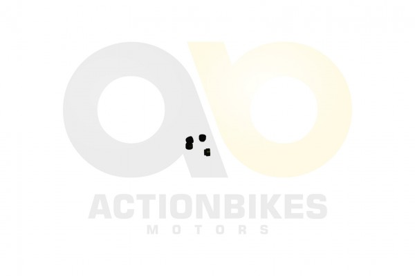 Actionbikes Feishen-Hunter-600cc-Ventilschaftdichtung-Set-4-Stk 322E312E30312E30343930 01 WZ 1620x10