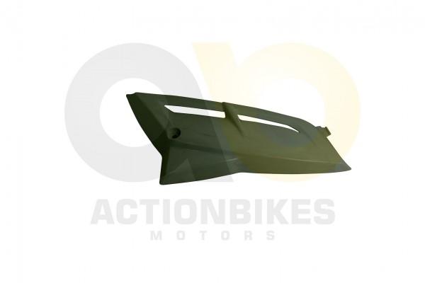 Actionbikes Dinli-450-DL904-Verkleidung-Khler-links-wei 463135303039382D3036 01 WZ 1620x1080