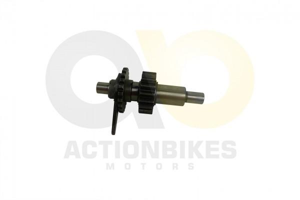 Actionbikes Shineray-XY250ST-9E--SRM--STIXE-Welle-Rckwrtsgang 32333930302D3131342D30303030 01 WZ 162