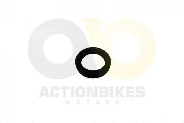 Actionbikes Shineray-XY250STXE-Simmerring-Getriebenebenwelle-20347 32333739302D3037312D30303030 01 W