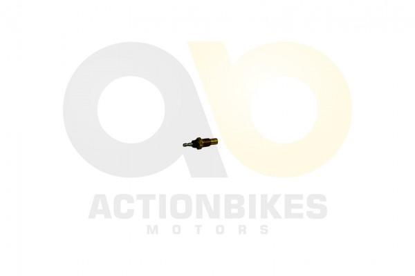 Actionbikes Motor-260cc-XY170MM-Temperatursensor 31323233303232353031 01 WZ 1620x1080