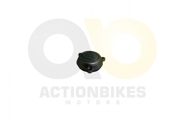 Actionbikes Shineray-XY250SRM-Anlasserdeckel 31313432312D3037302D30303030 01 WZ 1620x1080