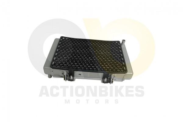 Actionbikes Shineray-XY250ST-3E-Khler-mit-Lfter 3137303430303231 01 WZ 1620x1080