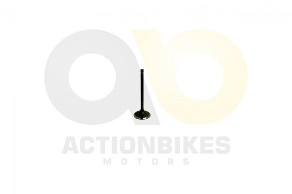 Actionbikes Jetpower-Motor-E15-700-Auslassventil 453135303030332D3030 01 WZ 1620x1080