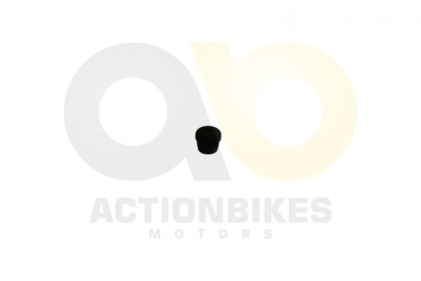 Actionbikes Shineray-XY250SRM-Heckbumperstopfen 34313933302D3531362D303030302D32 01 WZ 1620x1080