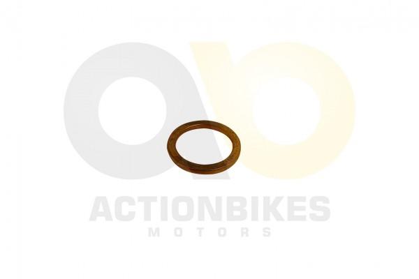 Actionbikes Shineray-XY125-11-Dichtung-Auspuff 3138313430303630 01 WZ 1620x1080