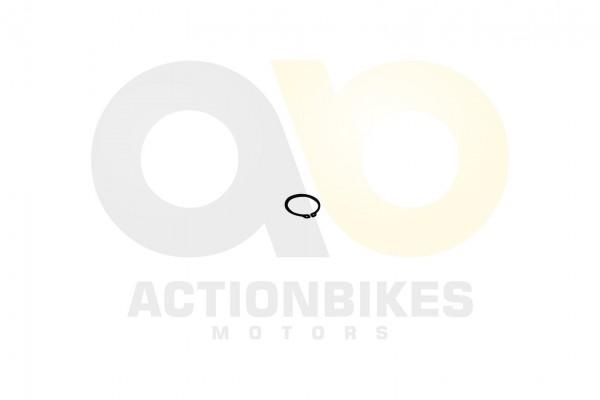 Actionbikes Dinli-450-DL904-Segering-fr-Traggelenk 413130303032312D3433 01 WZ 1620x1080