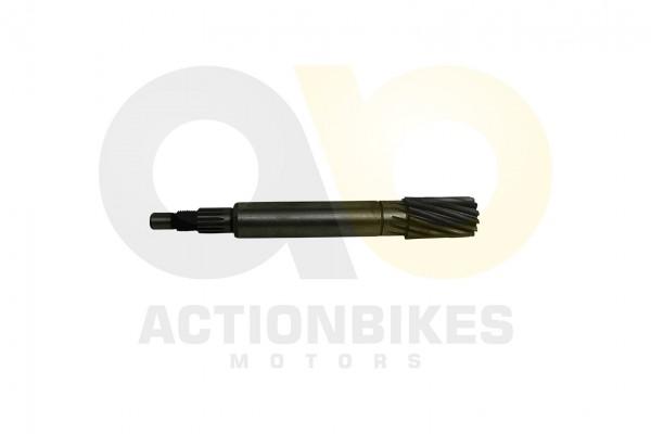 Actionbikes 1PE40QMB-Motor-50cc-Getriebeeingangswelle 32333431312D47414B2D39323130 01 WZ 1620x1080