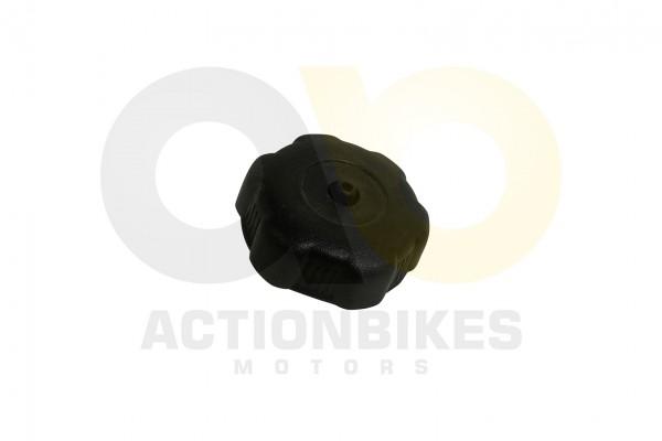 Actionbikes Shineray-XY150STE-Tankdeckel-XY200ST-6A 31363032323136312D31 01 WZ 1620x1080