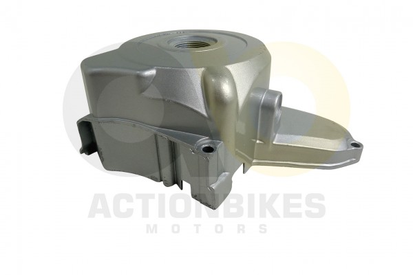 Actionbikes Mini-Quad-110-cc-Lichtmaschinengehuse-silberAnlasser-oben 333535303031352D33 01 WZ 1620x