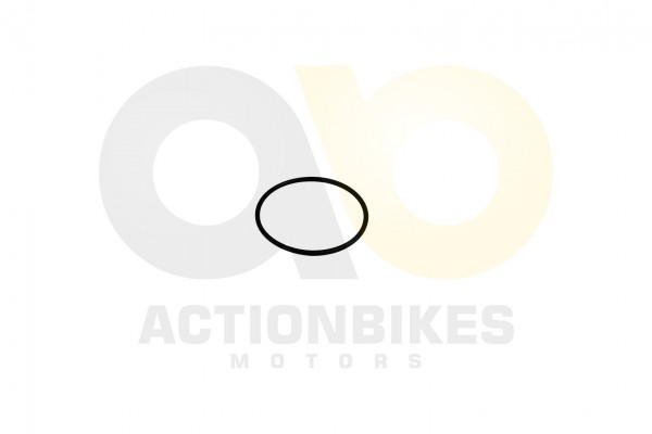 Actionbikes Shineray-XY200STII-Dichtring-625x25-Deckel-Anlasser 31313432322D3037302D30303030 01 WZ 1