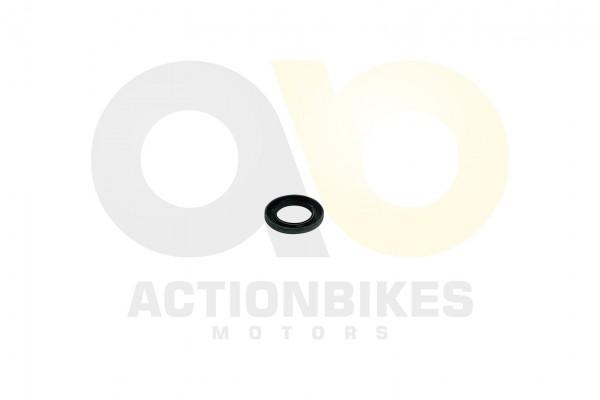 Actionbikes Simmerring-38627-BASL-Umlenkgetriebeeingang-Jetpower-DL702 532D3030362D303136312D4130 01