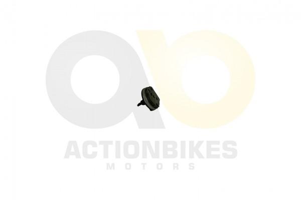 Actionbikes Motor-250cc-CF172MM-lpumpe-mit-Welle 31353130302D534248302D30303030 01 WZ 1620x1080