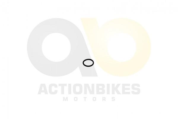 Actionbikes Shineray-XY200STII-Dichtring-20-x-25-fr-Welle-Nockenwellenzahnrad 31343133362D3037302D30