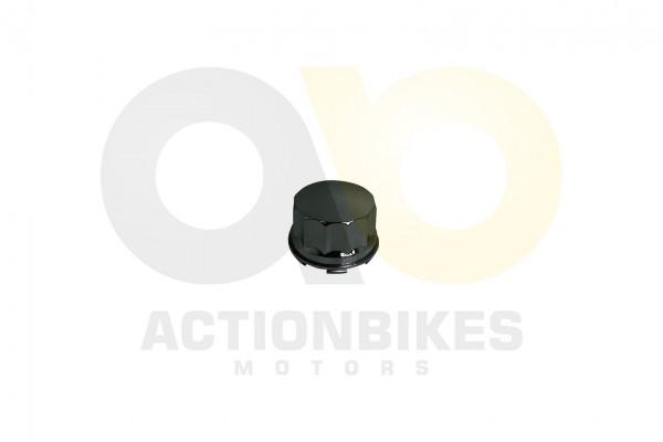 Actionbikes Shineray-XY250ST-9C-Radabdeckung 37333031303133342D31 01 WZ 1620x1080