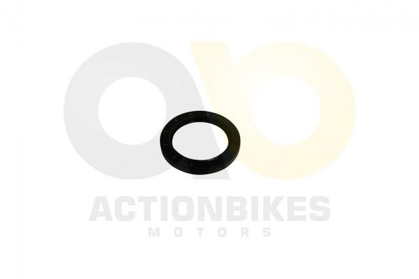 Actionbikes Simmerring-659010-Differential-Ausgang-hinten--XY500ATV 313030302D36352F39302F3130 01 WZ
